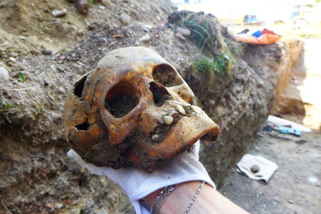 Kosterní antropologie čte v lidských kostech jako v knize    foto: archiv Marcely Horákové