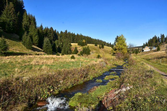 Potok Černá voda,  přítok Malé Úpy | foto: Karel Engliš,  Český rozhlas